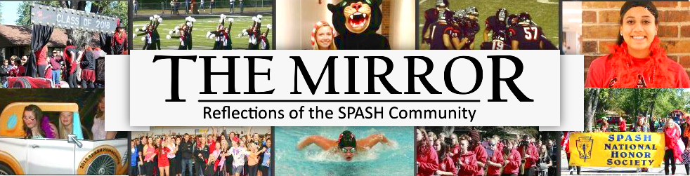 Reflections of the SPASH Community